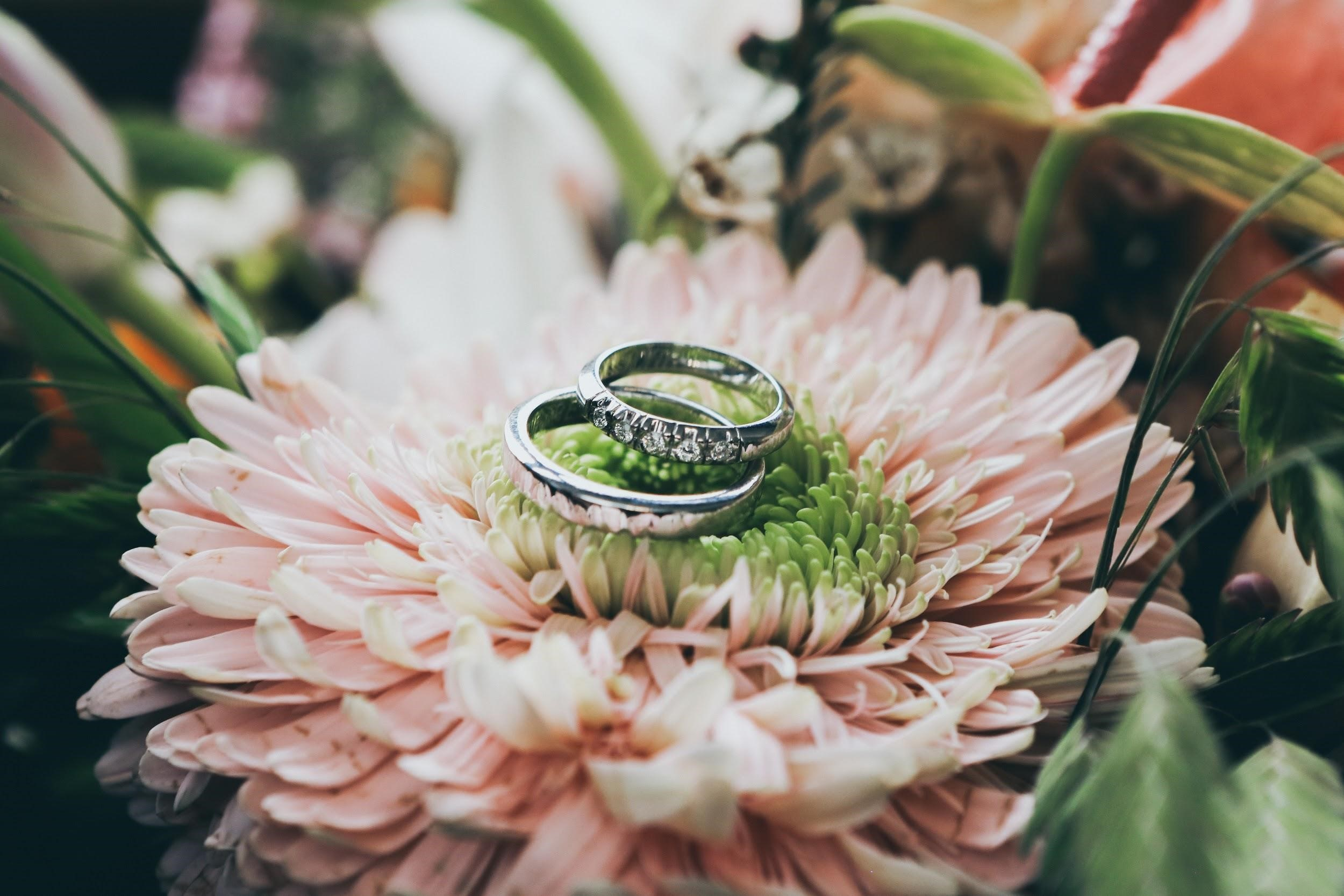 Planning a Planet-Friendly Wedding: Sustainable Tips and Tricks